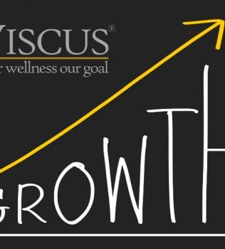 Viscus tar in kapital inför nästa tillväxtresa!